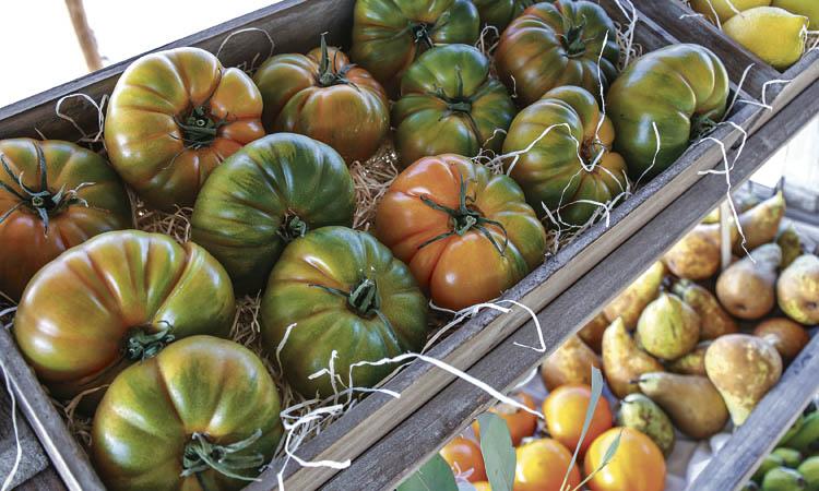 Què és l'alimentació sostenible i per què és clau?