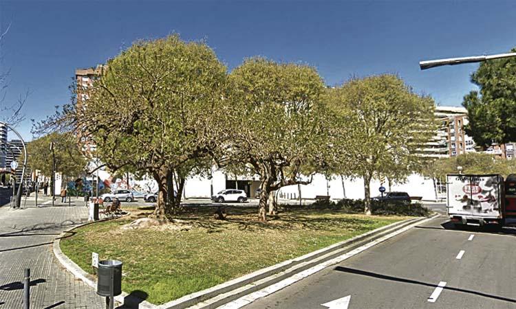 Salvats els arbres de l'illa del carrer Cardenal Reig