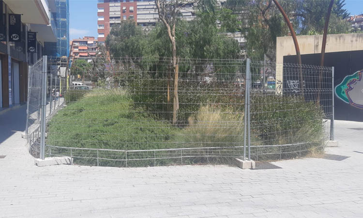 JxCat reivindica el pla de xoc sobre parcs i jardins que el Districte impulsarà