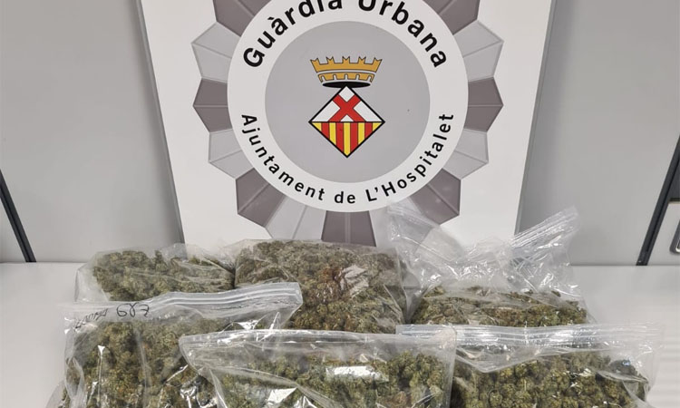 Decomissen cinc quilos de marihuana en un club cannàbic de l'Hospitalet