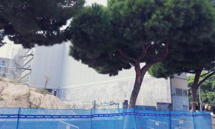 Protestes per evitar la tala d'arbres a l'avinguda Pau Casals de l'Hospitalet
