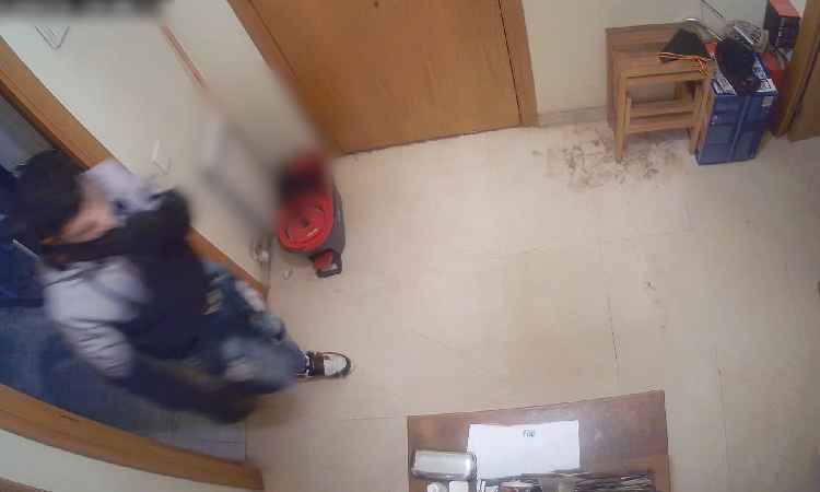 Detenen dos lladres que van entrar amb força en habitatges de Gavà