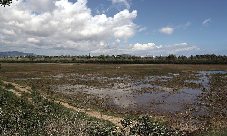 Els pagesos alerten que Agbar els pot deixar sense aigua