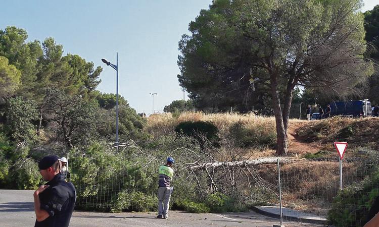 Ecologistes acusa el govern de Castelldefels d'amagar informació