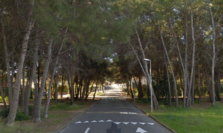 Castelldefels suspèn el permís per construir al bosquet de Montmar