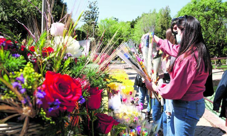 Flors agressio Santa Coloma