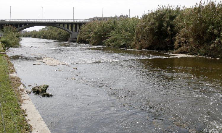 Santa Coloma impulsa un refugi de biodiversitat per renaturalitzar el Besòs