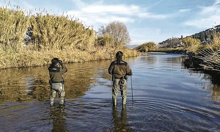 El riu Besòs necessitarà dos o tres anys per recuperar-se