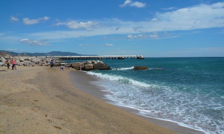 El Besòs, un litoral contaminat?