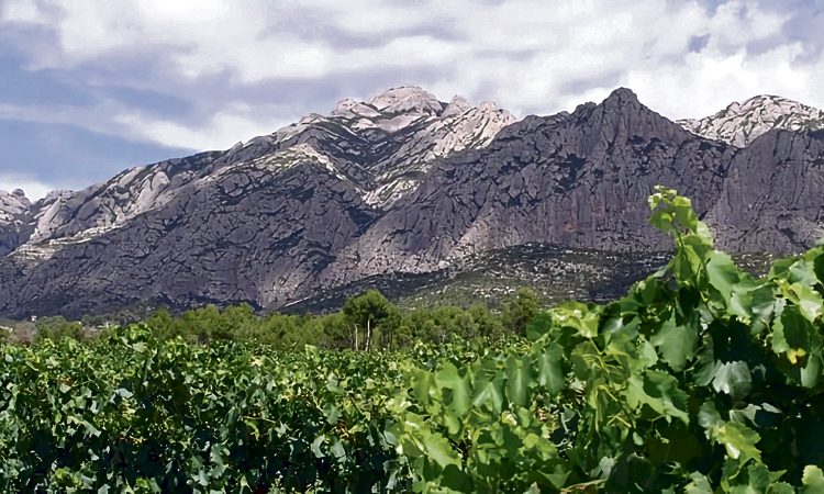 El Parc Rural de Montserrat aspira a ser referent europeu