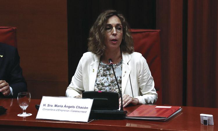 """Chacón: """"El comerç tradicional perilla si no es reformula"""""""