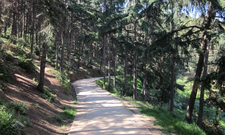 El parc del Guinardó, un gran pulmó verd en plena ciutat
