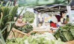 Mercats i parades de pagès: 10 espais d'alimentació fresca i sana