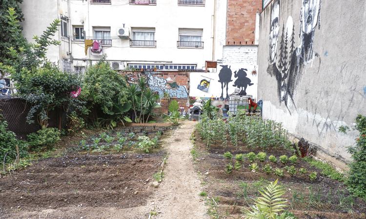 L'hort 'Date una Huerta' seguirà viu un temps més