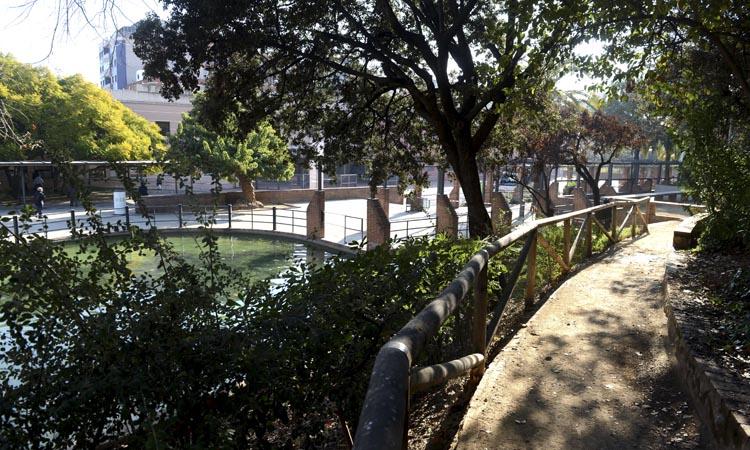 El parc de la Pegaso: una illa de pau i desconnexió