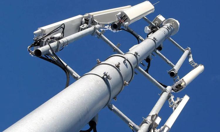 La FAVB i Ecologistes en Acció alerten sobre els riscos del desplegament del 5G