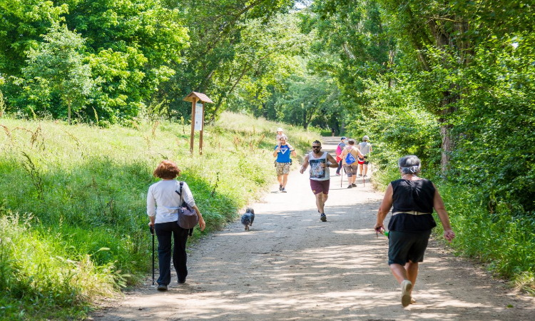 La supervivència del Parc de Collserola queda blindada per llei