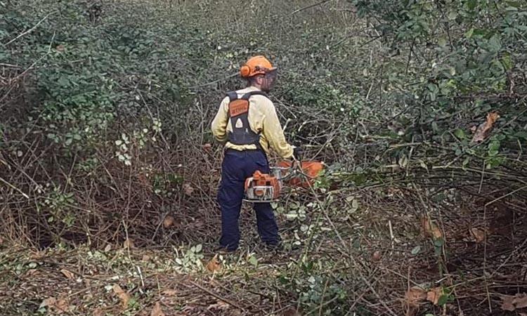 Comencen els treballs per prevenir incendis a Sant Fost
