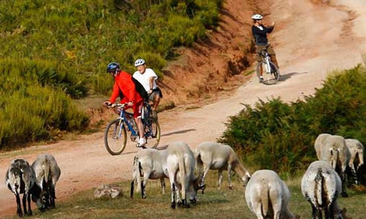 Que el Vallès sigui referència del turisme de proximitat
