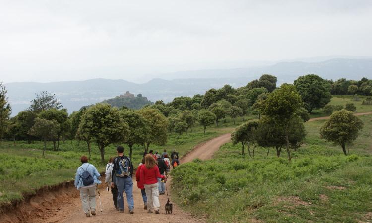 Parc del Montseny
