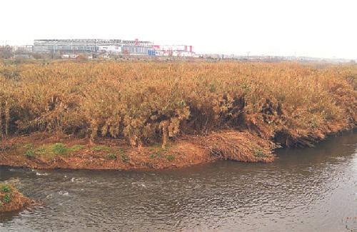 El Llobregat ha estat, tradicionalment, un riu lligat a l'activitat industrial. Foto: Línia L'H