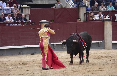 Les corrides de toros es van prohibir a Catalunya l'any 2012. Foto: Arxiu