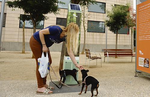 L'e-can premia als gossos que orinin a sobre. Foto: Ajuntament