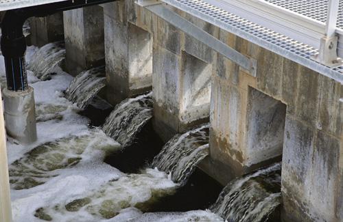 L'Estació de Regeneració d'Aigües (ERA) del Llobregat és una referència europea. Fotos: AMB